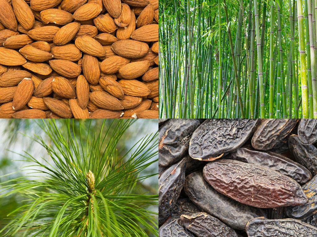 Økologisk eller sertifisert økologisk - er det noen forskjell? - voyaorganics.no